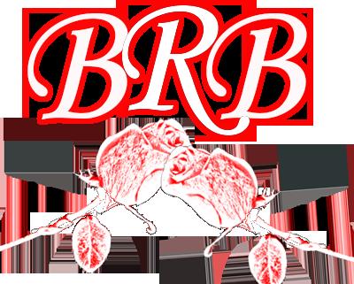 The Brianna Rae Band