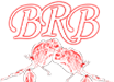 The Brianna Rae Band Logo